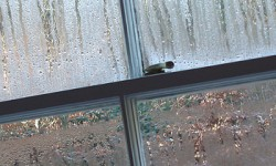 Condensation Control Rtc Group Remedial Treatment Consultants