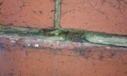 cavity-wall-tie-corrosion